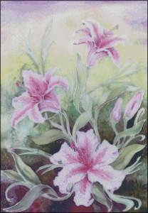 схема цветы 40 оттенков