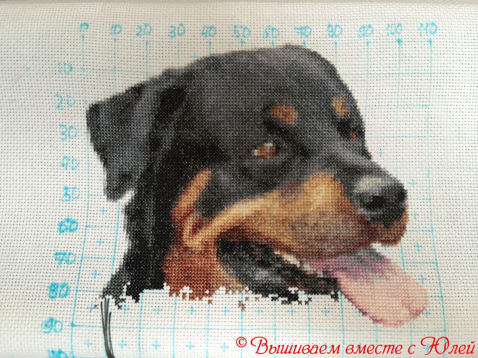Вышивка черно белая собаки